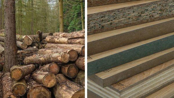 Nên dùng gỗ công nghiệp hay gỗ tự nhiên? Gỗ công nghiệp xấu vì sao?